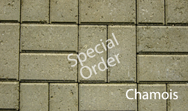 Chamois Special Order Holland